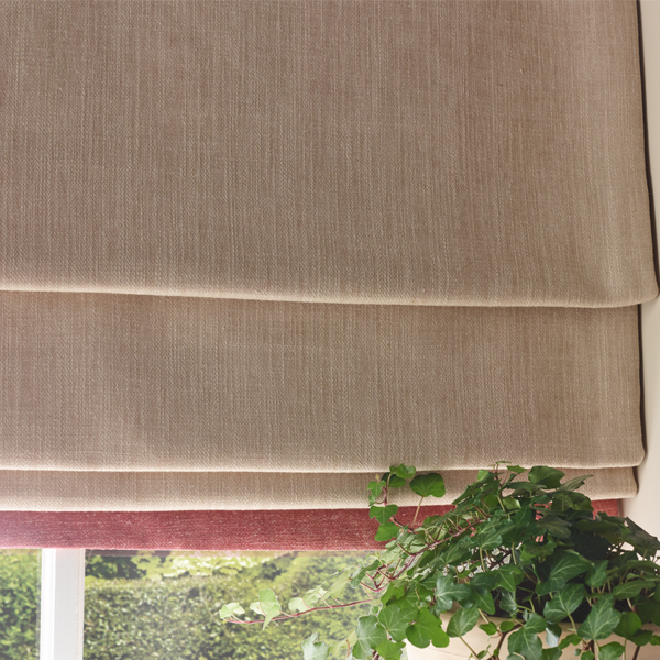roman blind and plant